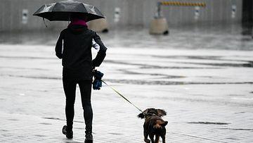 AOP vesisade helsinki koira sateenvarjo