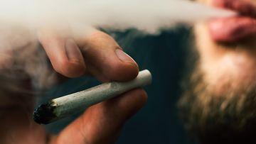 polttaa pilveä, kannabis, jointti