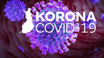 gr-1103-Korona