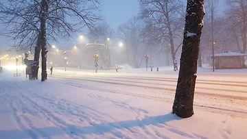 Marjukka Sillanpään ottama lumikuva Turusta