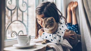 kodikas lapsi kissa