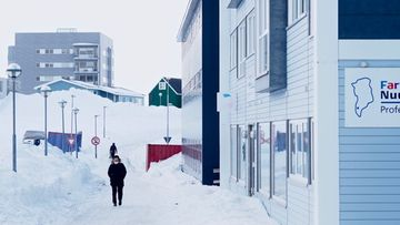 grönlanti 2