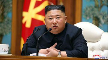 Kim Jong-un AOP 2
