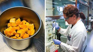 appelsiinit Suomen tulli