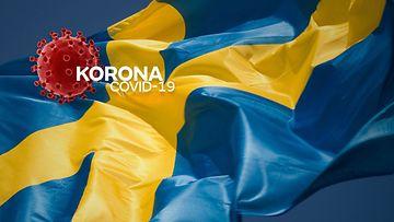 Korona Ruotsi