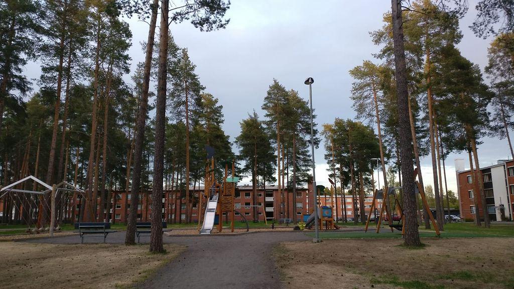 Oulu Puukotus