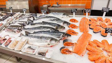 Kala kalatiski lohi ruokakauppa