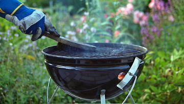 Grilli grillaus  grillin puhdistus