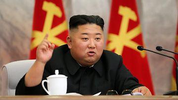 Kim Jong-un AOP