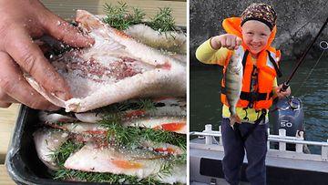 Suomen vapaa-ajankalastajien keskusjärjestö kalastus ahven
