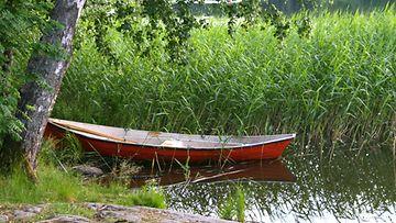 Soutuvene järvi kesä