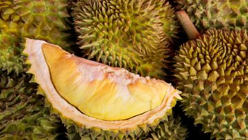 durianhedelmä