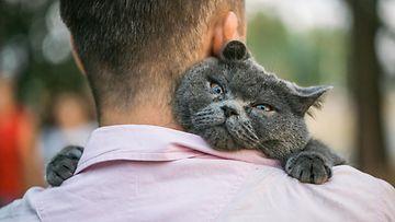 kissa ja omistaja