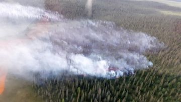 Metsäpalo Kittilä LEHTIKUVA