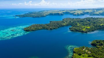 AOP Papua-Uusi-Guinea