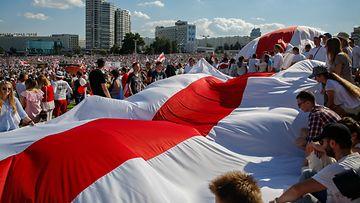 aop Valko-Venäjän opposition lippu