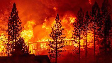 lehtikuva creek fire
