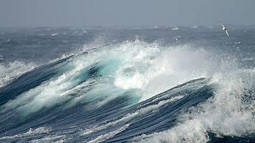 meri aallot myrsy tuuli kuvituskuva AOP