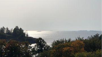 Itämeri, Suomenlahti