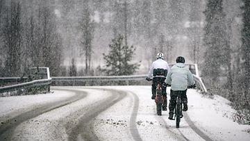 lumi talvi lehtikuva