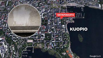 0411-kuopio-kananmunat