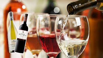 viinit1