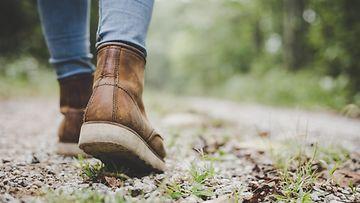 shutterstock kävely metsässä