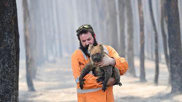 EPA Australia metsäpalo 2