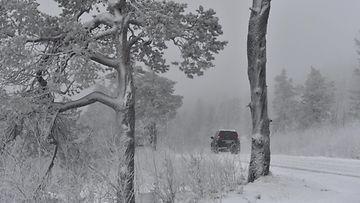 lumi sää talvi vähän lunta LK ladattu 041220