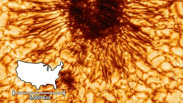 DKIST-First-Sunspot-with-scale