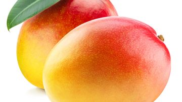 shutterstock mango