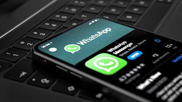 shutterstock whatsapp