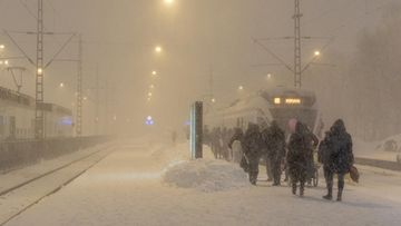 AOP: Lumimyräkkä 1201