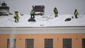 lehtikuva lumen pudotus kuvituskuva
