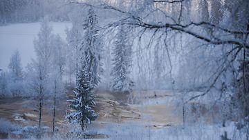 Sääkuva Pitkäkoski 1601