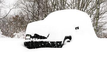 shutterstock auto lumessa