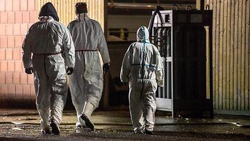 AOP lintuinfluenssa Saksa