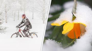 AOP lumi kevät talvi
