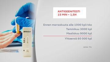 gr-0303-Antigeenitesti-1