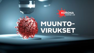 OMA: Muuntovirus, koronavirus, virusmutaatio