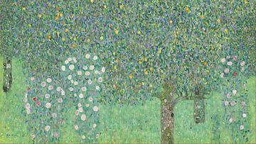 Gustav Klimtin Ruusupensaat puiden alla -maalaus.