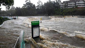 AOP Australia tulva