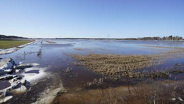 LK 3.4.2021 lapuanjoki tulva