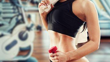 fitness, kuntosali