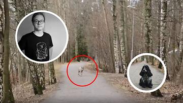 Janne Salomeri ja susi