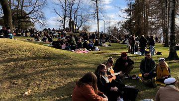 OMA: Vappupäivä Helsingin Kaivopuistossa