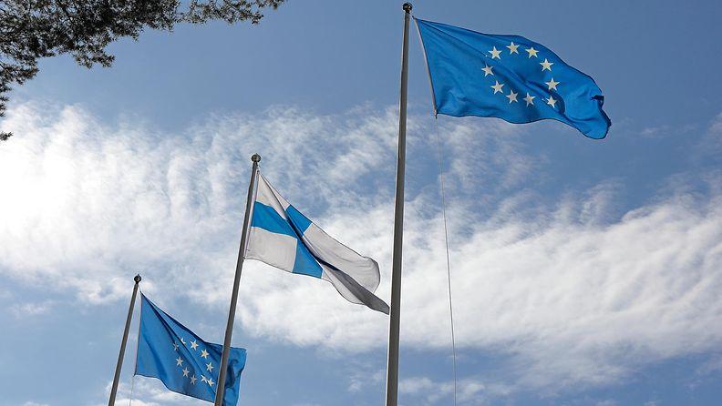 AOP EU Eurooppa Suomi lippu