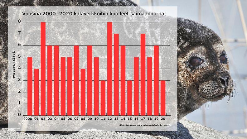 Vuosina 2000-2020 kalaverkkoihin kuolleet saimaannorpat