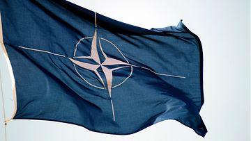 AOP Nato lippu