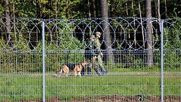 Maastopukuiset rajavartijat ja koira kävelevät Liettuan raja-aidan toisella puolella metsän reunassa.